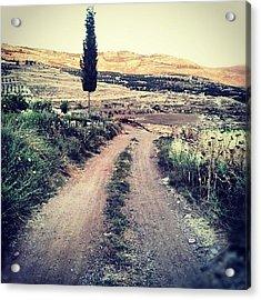 #jo #jordan #amman #nature #green #road Acrylic Print