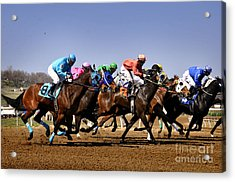 Acrylic Print featuring the photograph Jockeying For Position by Nava Thompson
