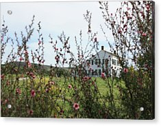 Acrylic Print featuring the photograph Johnston House In Half Moon Bay by Susan Alvaro