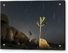 Joshua Tree Star Trails Acrylic Print by Dung Ma
