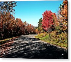Acrylic Print featuring the photograph Joy Ride by Christian Mattison