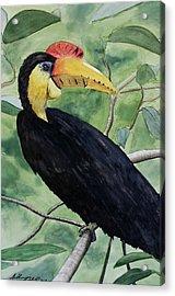 Jungle Bird Acrylic Print by Anthony Nold