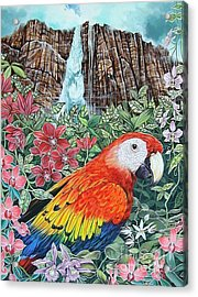 Jungle Parrot Acrylic Print by Kimberlee  Ketterman Edgar
