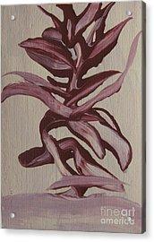 Jungle Pinks Acrylic Print