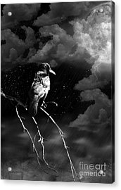 Just Another Moonlight Mile Acrylic Print by Rhonda Strickland