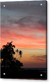 Just Love Acrylic Print by Raquel Amaral