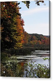 Just Simple Beauty Acrylic Print by Kim Galluzzo Wozniak
