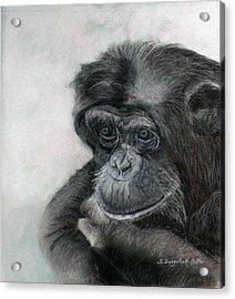 Just Thinking Acrylic Print by Sandra Sengstock-Miller
