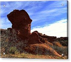 Acrylic Print featuring the photograph Jut Rock Original by Clarice  Lakota