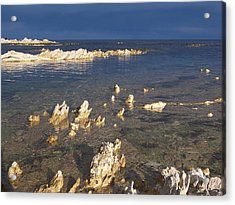 Acrylic Print featuring the photograph Kaikoura Coast by Peter Mooyman