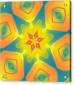 Kaleidoscope Series Number 8 Acrylic Print by Alec Drake
