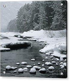 Katun River Acrylic Print by Elena Filatova