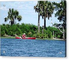 Kayaking Along The Gulf Coast Fl. Acrylic Print by Marilyn Holkham
