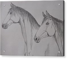 Acrylic Print featuring the drawing Keiger Mustangs by Gerald Strine