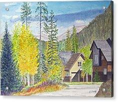 Keystone Co Acrylic Print by Carol Flagg