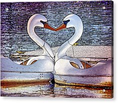 Acrylic Print featuring the photograph Kissing Swans by Alice Gipson