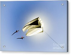 Kite And The Sun Acrylic Print by David Lade