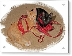 Kittens Ribbons And Beads Acrylic Print by Judy Deist