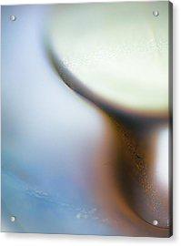 Knob Acrylic Print