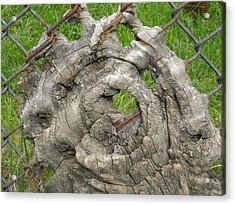 Acrylic Print featuring the photograph Knot In Fence 1 by Christophe Ennis