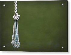 Knot Acrylic Print by Kelly Hazel