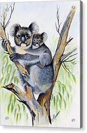 Koala And Baby Acrylic Print