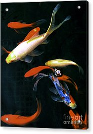 Acrylic Print featuring the digital art Koi Pond by Dale   Ford