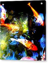 Koi Story Three A Acrylic Print by Randall Weidner