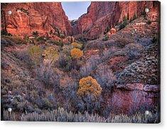 Kolob Canyon Acrylic Print