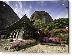Korean Buddhist Temple With Flowers And Mountains Acrylic Print by Thomas Arthur