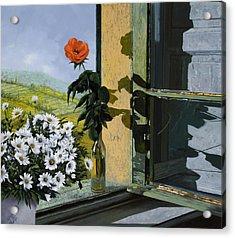 La Rosa Alla Finestra Acrylic Print by Guido Borelli