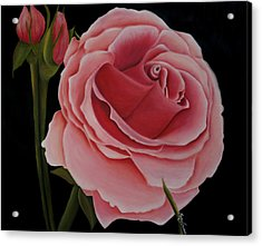 La Rosa  Acrylic Print by Mary Gaines