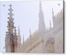 Laced Granada Acrylic Print by Lee Versluis