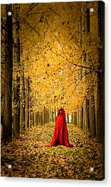 Lady In Red - 5 Acrylic Print