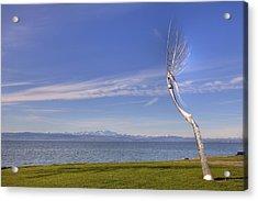 Lake Constace Friedrichshafen Acrylic Print by Joana Kruse