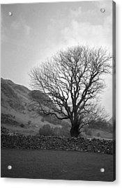 Lake District England Acrylic Print
