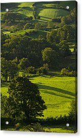 Lake District National Park, Cumbria Acrylic Print by Axiom Photographic