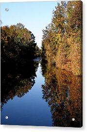 Lake Drummond Canal Acrylic Print by Feva  Fotos