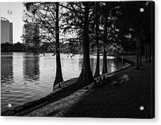 Lake Eola Water Edge Acrylic Print by Lynn Palmer