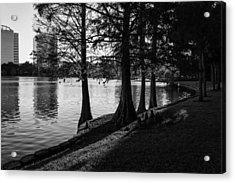 Acrylic Print featuring the photograph Lake Eola Water Edge by Lynn Palmer