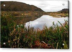 Lake In Killarney Acrylic Print by Barbara Walsh