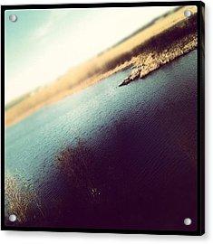 #lake #ocean #water #farm #pond #duck Acrylic Print