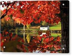 Lake Tarleton New Hampshire Acrylic Print by Butch Lombardi