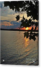 Lakeset Leaves Acrylic Print by TSC Photography Timothy Cuffe Jr