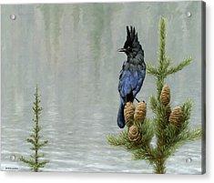 Lakeside Bandit Acrylic Print