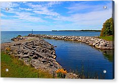 Acrylic Print featuring the photograph Lakeside Bend by Davandra Cribbie