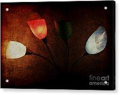 Lamp Acrylic Print by Billie-Jo Miller
