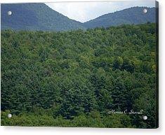 Landscape Collection - Vermont  Acrylic Print
