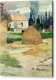 Landscape Near Arles Acrylic Print by Paul Gauguin
