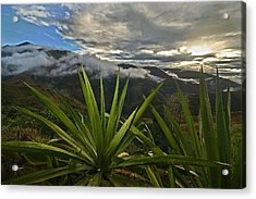 Landscape Of Southern Colombia. Department Of Narino. Acrylic Print by Eric Bauer